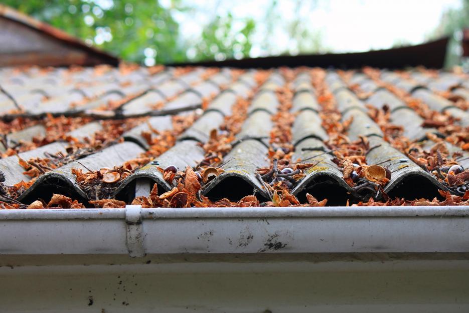 Příklad šindelové střechy.